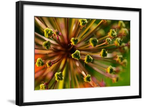 An Abstract Dynamic Plant Close-Up-gornostay-Framed Art Print