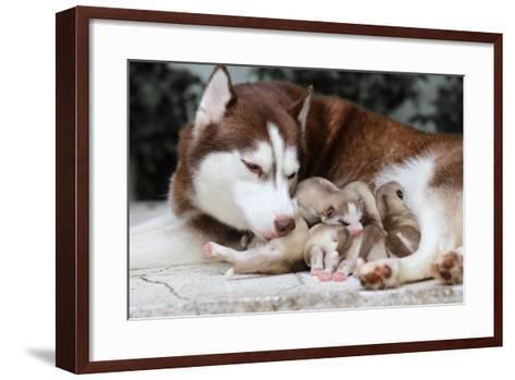 Mother and Baby- framsook-Framed Art Print
