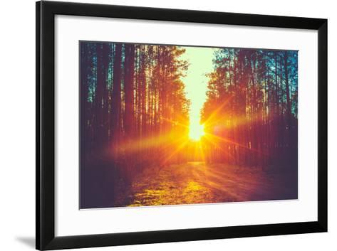 Forest Road under Sunset Sunbeams. Lane Running through the Autumn Deciduous Forest at Dawn or Sunr-Grisha Bruev-Framed Art Print