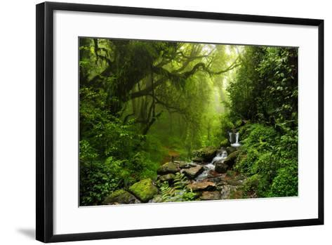 Subtropical Forest in Nepal-Quick Shot-Framed Art Print