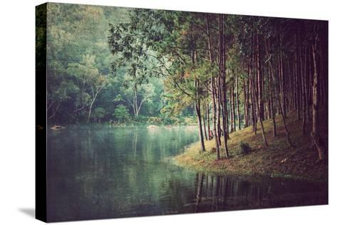 Forest Background ,Vintage Style- Nonnakrit-Stretched Canvas Print