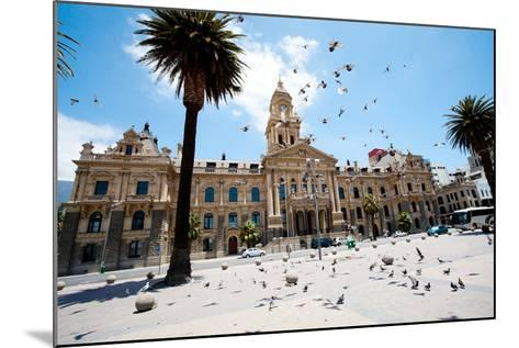 Pigeons Flying over City Hall of Cape Town, South Africa-michaeljung-Mounted Photographic Print