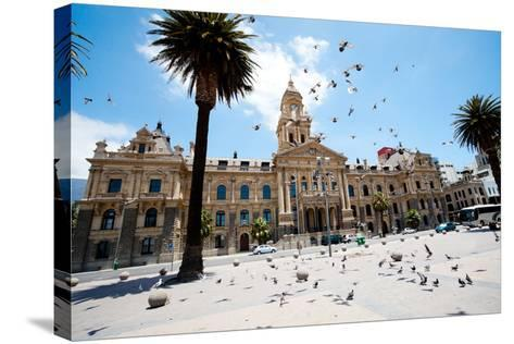 Pigeons Flying over City Hall of Cape Town, South Africa-michaeljung-Stretched Canvas Print