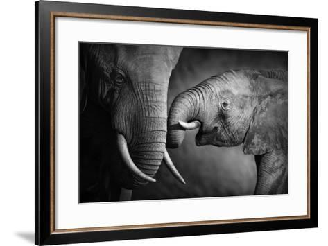 Elephants Showing Affection (Artistic Processing)-Johan Swanepoel-Framed Art Print