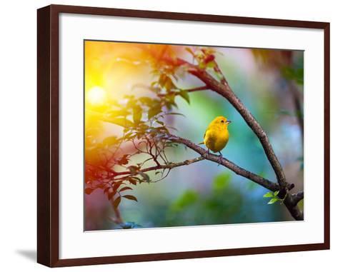 Yellow Bird Sitting on a Branch, Wildlife- seqoya-Framed Art Print