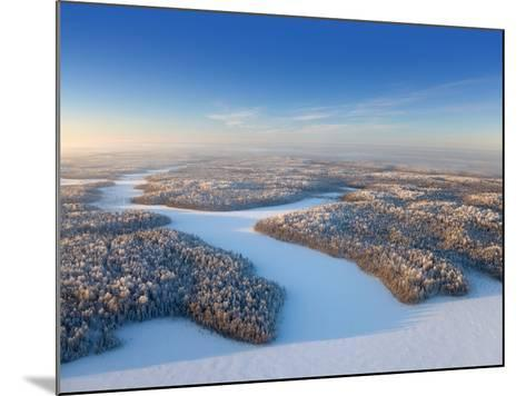 Aerial View of Forest Plain in Time of Sunny Winter Day.-Vladimir Melnikov-Mounted Photographic Print