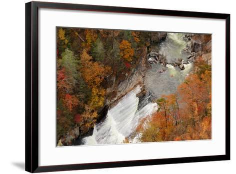 Kayakers Contemplate Going down a Rapid Viewed from above at Tallulah Gorge, Georgia.-ESB Professional-Framed Art Print