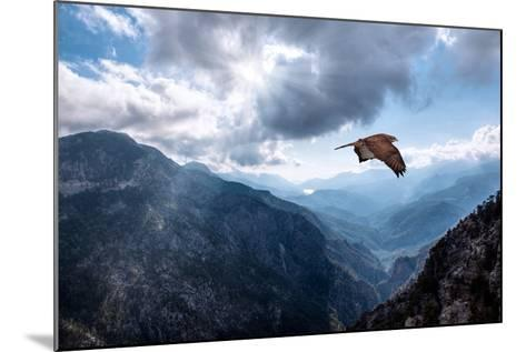 Hawk Flying over the Mountains-muratart-Mounted Photographic Print