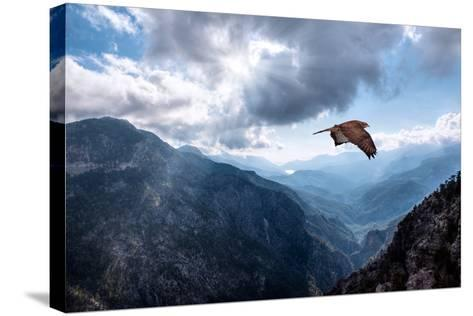 Hawk Flying over the Mountains-muratart-Stretched Canvas Print