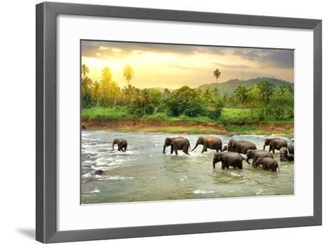 Elephants in River- Givaga-Framed Art Print