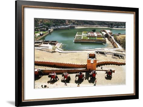 Elephants Climbing the Path to Amber Fort, Jaipur, Rajasthan, India- Mikadun-Framed Art Print