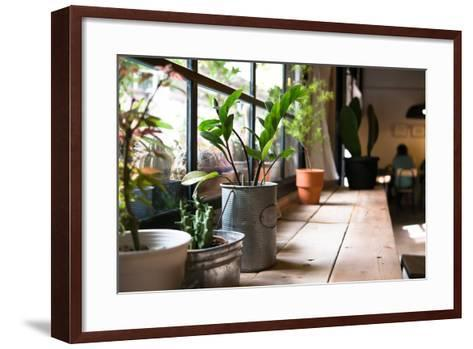A Small Plant Pot Displayed in the Window- imnoom-Framed Art Print