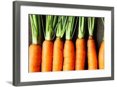 Raw Fresh Carrots with Tails, Top View-Olha Afanasieva-Framed Art Print