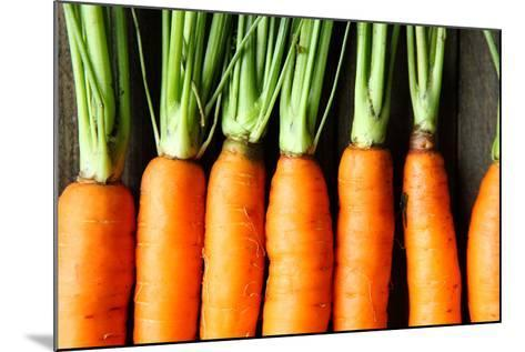 Raw Fresh Carrots with Tails, Top View-Olha Afanasieva-Mounted Photographic Print