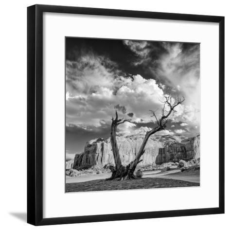 Monument Valley Juniper Tree and Mesa-Silvio Ligutti-Framed Art Print