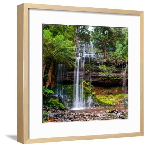 The Russell Falls, a Tiered Cascade Waterfall on the Russell Falls Creek, is Located in the Central-Yevgen Belich-Framed Art Print