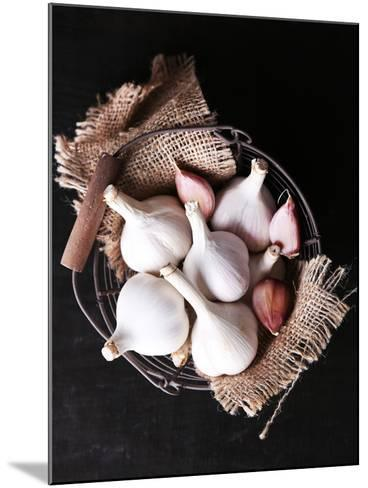 Garlic in Basket on Black Wooden Background-Africa Studio-Mounted Photographic Print