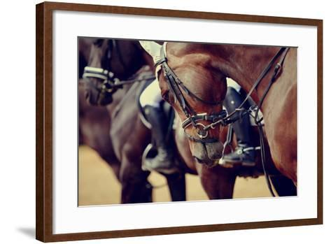 Portrait of a Sports Stallion. Riding on a Horse. Thoroughbred Horse. Beautiful Horse.-Elya Vatel-Framed Art Print