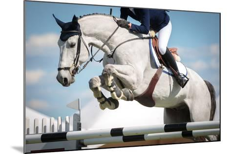 Horse Jumping-Catwalk Photos-Mounted Photographic Print