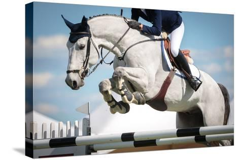 Horse Jumping-Catwalk Photos-Stretched Canvas Print