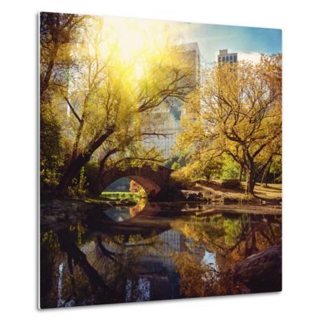 Central Park Pond and Bridge. New York, Usa.-Maglara-Metal Print