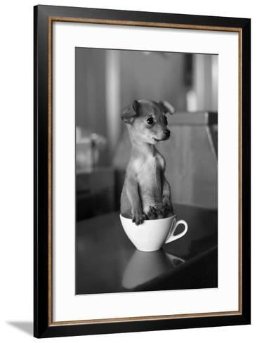 Puppy Dog in a Cup of Coffee-stokkete-Framed Art Print