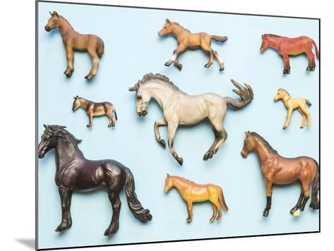 Flat Lay View of Neatly Arranged Plastic Horse Toys- pirke-Mounted Photographic Print