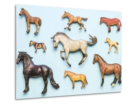 Flat Lay View of Neatly Arranged Plastic Horse Toys- pirke-Metal Print