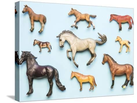 Flat Lay View of Neatly Arranged Plastic Horse Toys- pirke-Stretched Canvas Print