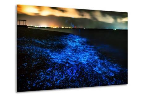 Bio Luminescence. Illumination of Plankton at Maldives. Many Bright Particles.-PawelG Photo-Metal Print