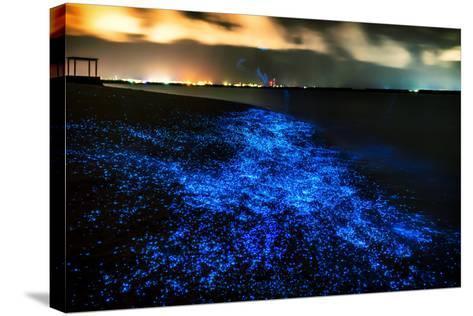 Bio Luminescence. Illumination of Plankton at Maldives. Many Bright Particles.-PawelG Photo-Stretched Canvas Print