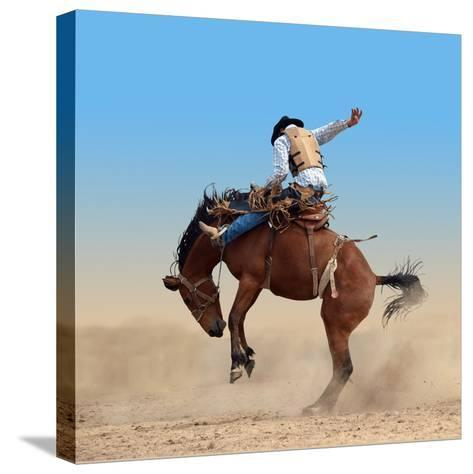 Bucking Rodeo Horse Isolated with Clipping Path-Margo Harrison-Stretched Canvas Print
