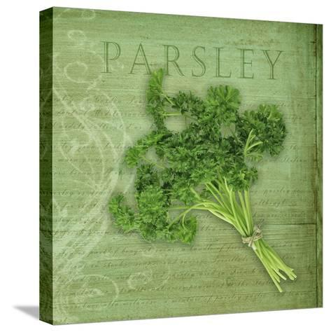 Classic Herbs Parsley-Cora Niele-Stretched Canvas Print