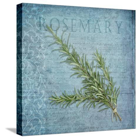 Classic Herbs Rosemary-Cora Niele-Stretched Canvas Print