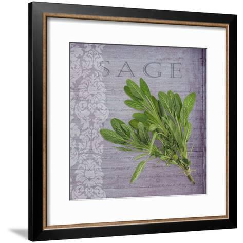 Classic Herbs Sage-Cora Niele-Framed Art Print