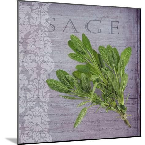 Classic Herbs Sage-Cora Niele-Mounted Photographic Print