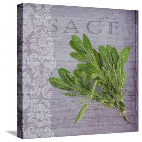 Classic Herbs Sage-Cora Niele-Stretched Canvas Print