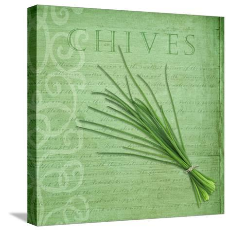 Classic Herbs Chives-Cora Niele-Stretched Canvas Print