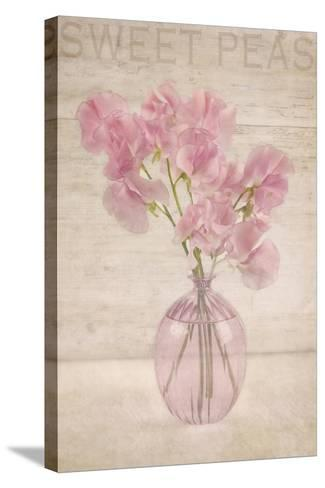 Pink Sweet Peas-Cora Niele-Stretched Canvas Print