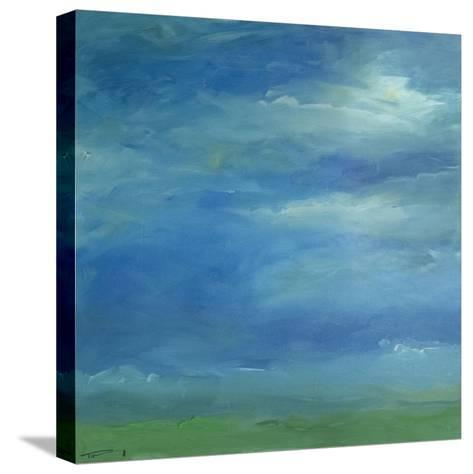 Skyscape 617-Tim Nyberg-Stretched Canvas Print