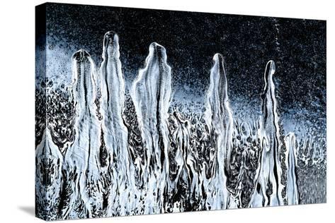 Stargazers-Ursula Abresch-Stretched Canvas Print