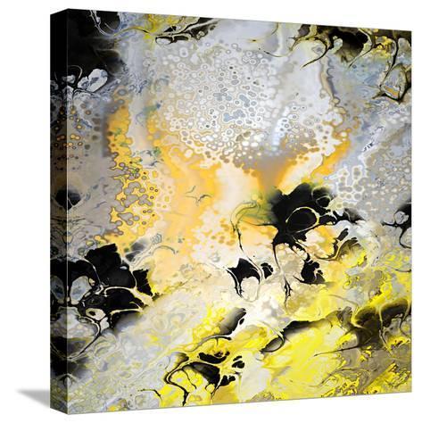 Harmony-Ursula Abresch-Stretched Canvas Print