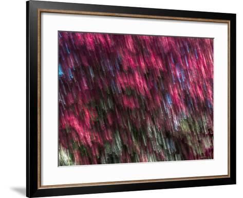Kinetic 19-Steven Maxx-Framed Art Print