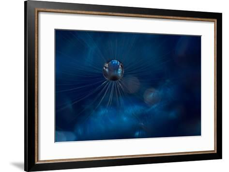 Midnight Blue-Heidi Westum-Framed Art Print