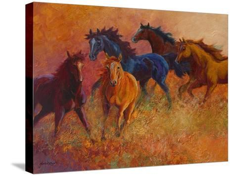 Free Range Horses-Marion Rose-Stretched Canvas Print