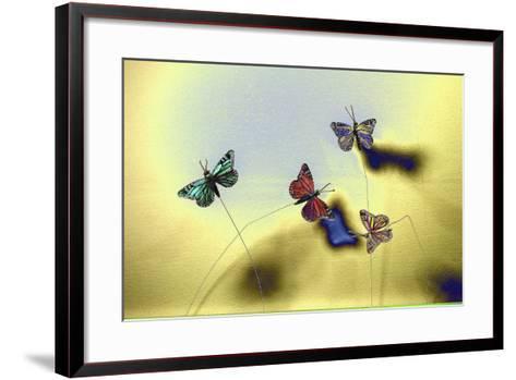 DSC1235-Tom Kelly-Framed Art Print