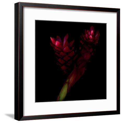 Delirium - Ginger-Magda Indigo-Framed Art Print