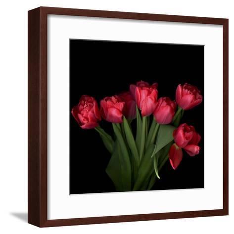 Red Tulips 6-Magda Indigo-Framed Art Print