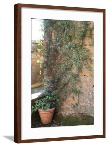 THP-civita-IMG-0085-Tanya Hovey-Framed Art Print