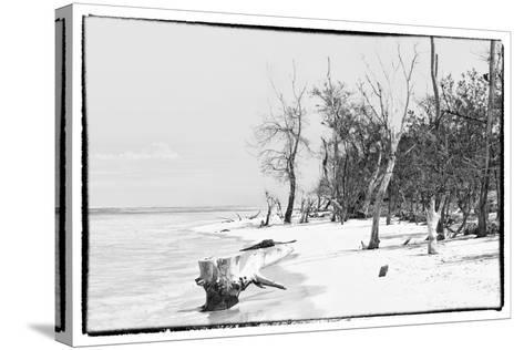 Cuba Fuerte Collection B&W - Wooden Beach-Philippe Hugonnard-Stretched Canvas Print